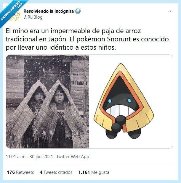 historia,impermeable,japón,pokémon,snorunt