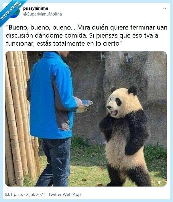comida,discusión,panda,terminar