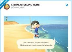 Enlace a Animal Crossing 2021, por @Canela_chair
