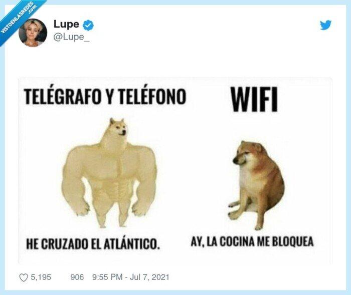 cheems,doge,teléfono,telégrafo,wifi