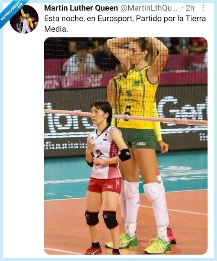 gigante,gnomos,meme,Twitter,volleyball