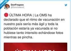 Enlace a Hay demasiado tonto, por @Donchaleco2