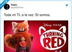 Enlace a Gran zorra roja, sí, por @pablofluiters
