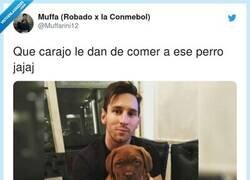 Enlace a Vaya con el perrito de Messi, por @Muffarini12