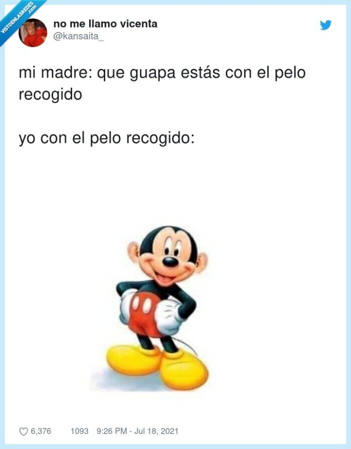 mickey mouse,orejas,pelo,recogido