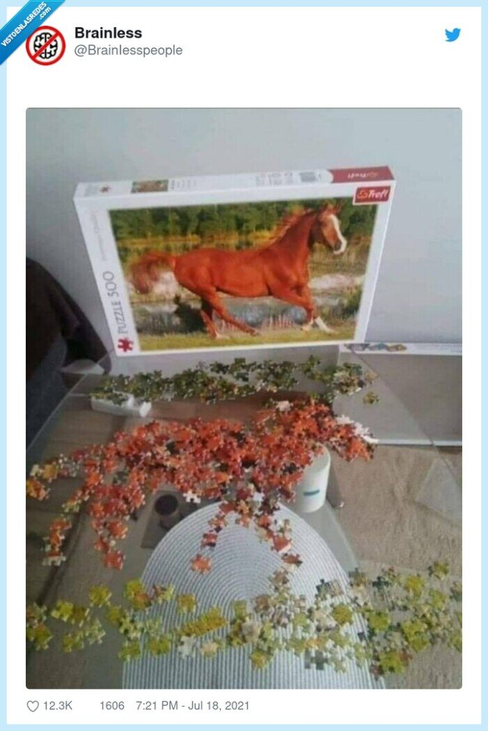 caballo,puzle
