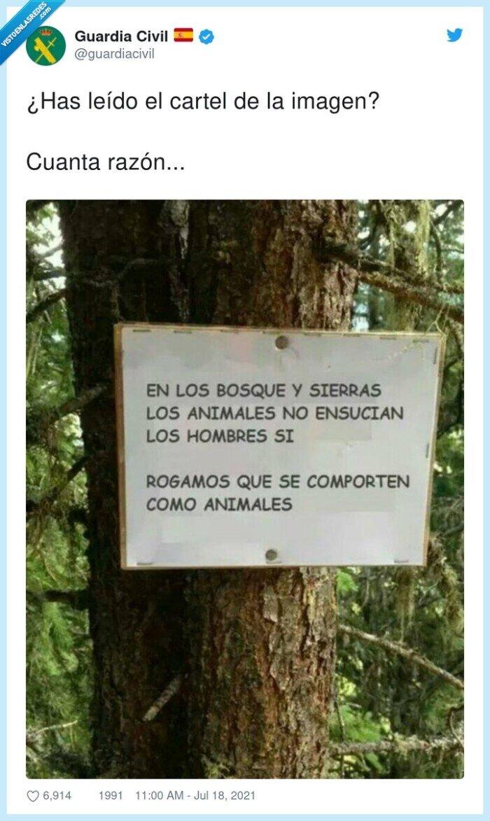 animales,bosque,cartel