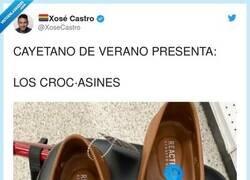 Enlace a Crocasines saltarines con la piel de dos mastines, por @XoseCastro