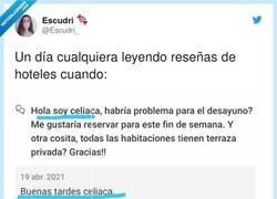 Enlace a Así llaman a las Celias cuando son grandes, por @Escudri_