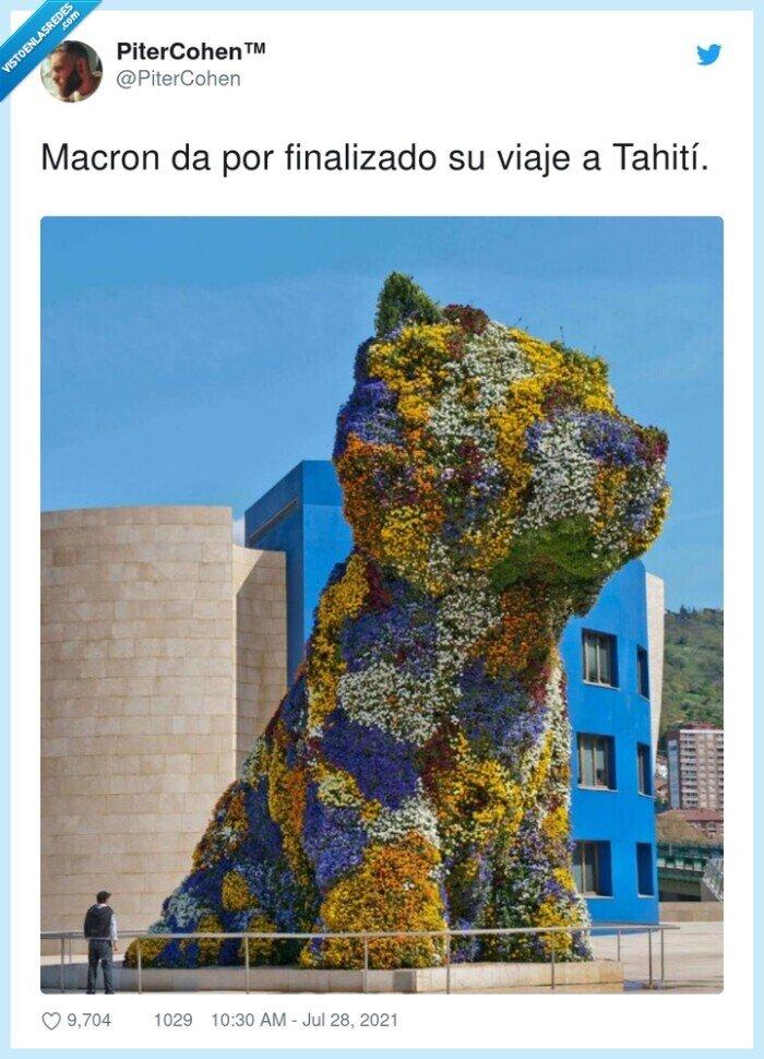 flores,macron,museo guggeinheim,perro,tahití