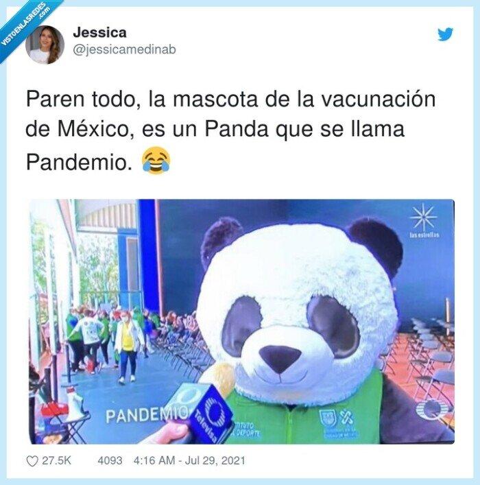 mascota,méxico,panda,pandemio,vacunación