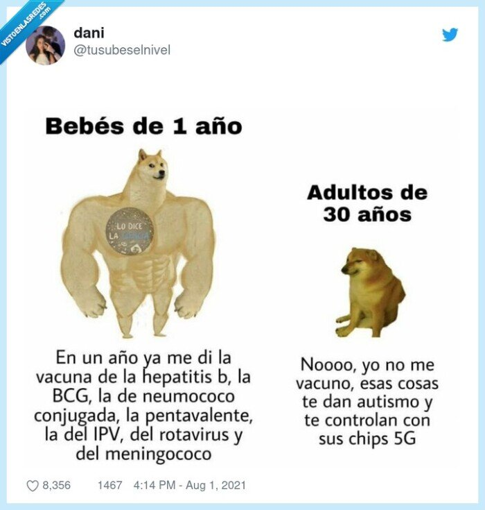 adulto,bebe,cheems,doge,vacunas