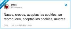 Enlace a La vida con cookies, por @cracacraca