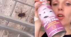 Enlace a Se le mete una cucaracha en casa, y la investigación que hace es top, por @shesaidwoww