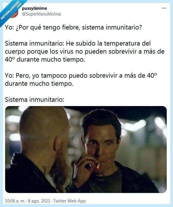 fiebre,sistema inmunitario,temperatura,virus