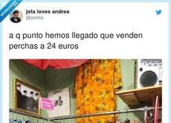Enlace a Has leído mal, pone 24€ el kg, osea que te llevas por 24€ 1kg de perchas, lo veo bastante bien, por @jootita