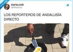 Enlace a Cúshame shurrita, por @RafalcorS