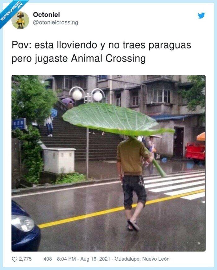 animal crossing,lloviendo,paraguas
