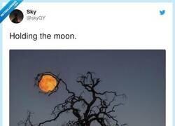 Enlace a Fotón, por @skyQY