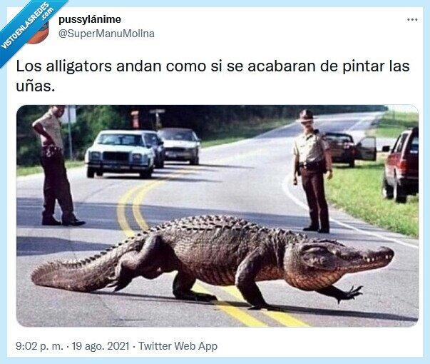 alligators,andar,pintar,uñas