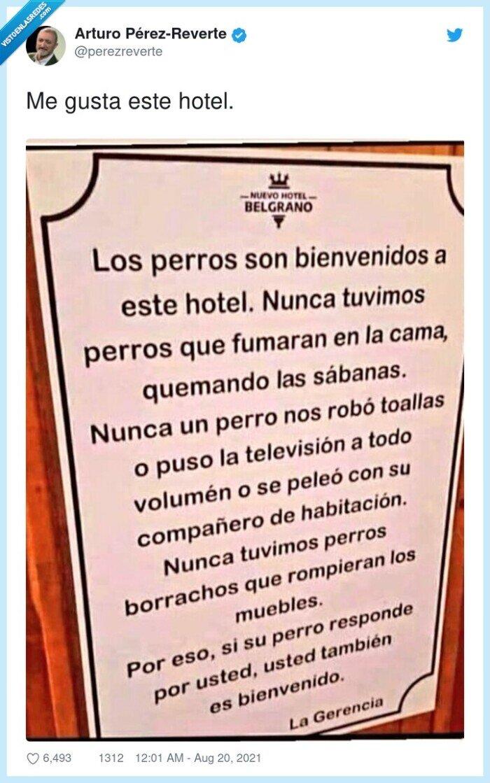 cartel,hotel,perros