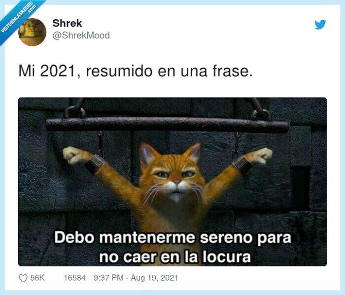 2021,locura,resumido,sobrevivir