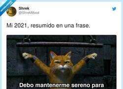 Enlace a Vamos que solo quedan 4 meses, por @ShrekMood