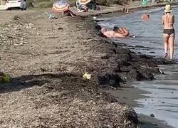 Enlace a Ostras ostras ostras, las imágenes de esta playa son de locos