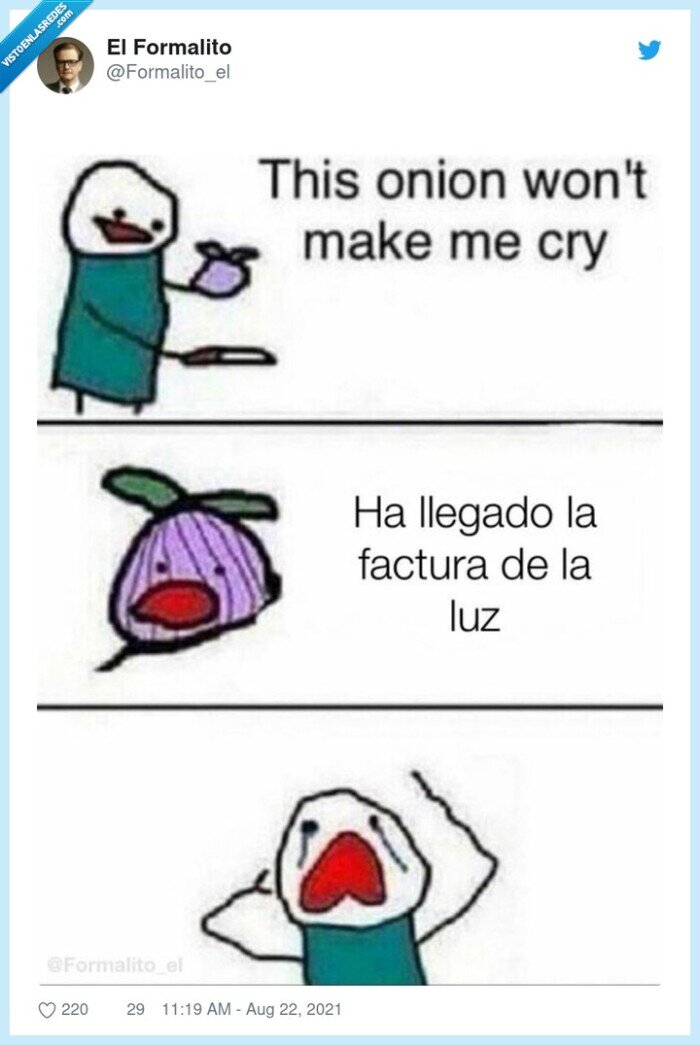cebolla,factura de la luz,llorar