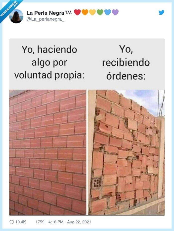ladrillos,ordenes,pared,voluntad propia