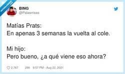 Enlace a Es que es un acoso y derribo contra la moral de los chavalines ya desde JULIO, por @Palasrrisas