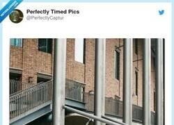 Enlace a Momento perfecto, lugar perfecto, por @PerfectlyCaptur