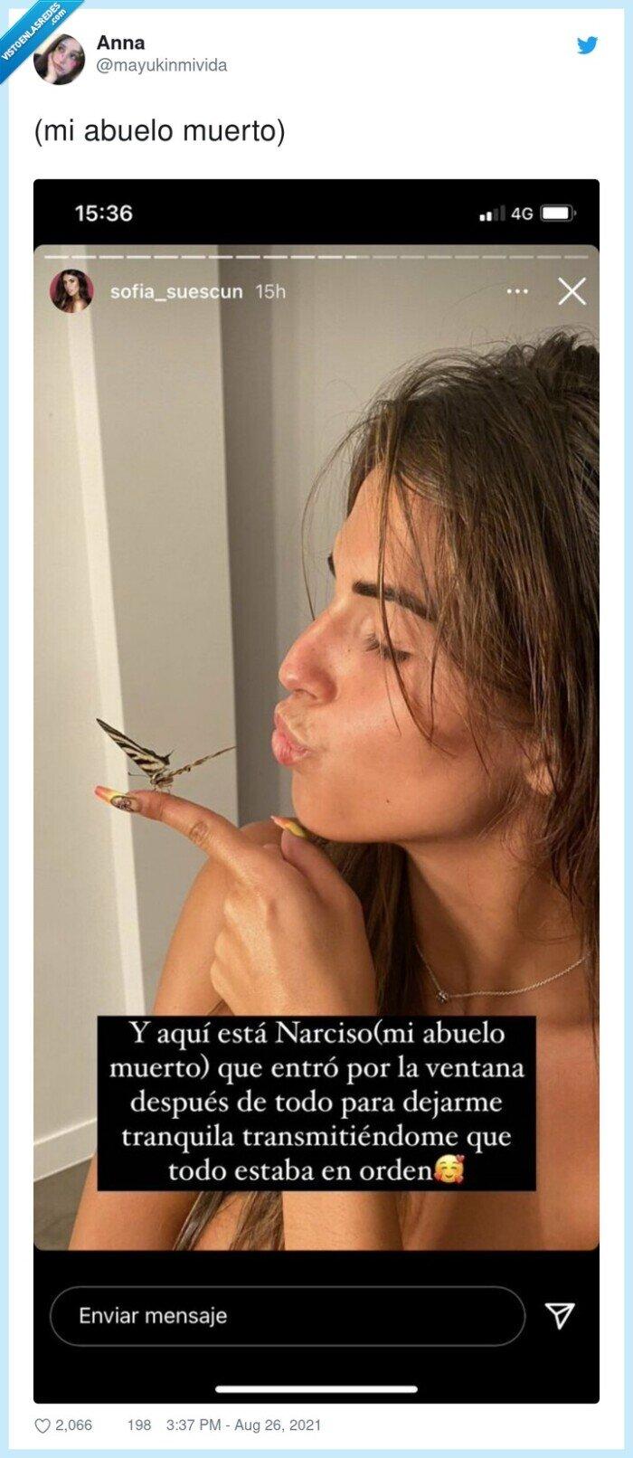 abuelo,mariposa,sofia cuescun,wtf