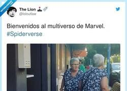 Enlace a Spiderverse, por @loloutlaw