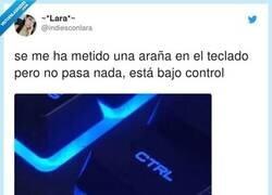 Enlace a Bajo control, por @indiesconlara