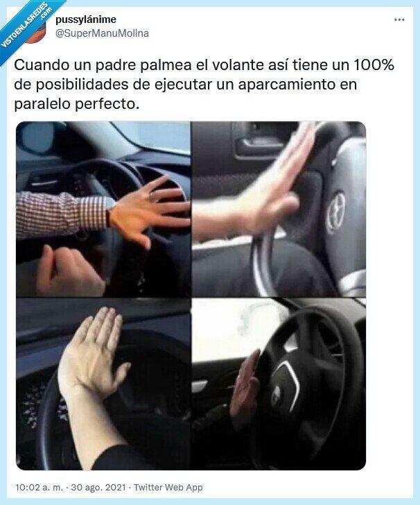 aparcar,padre,paralelo,volante