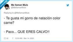 Enlace a Yo me lo había creído, por @MellamanMulo