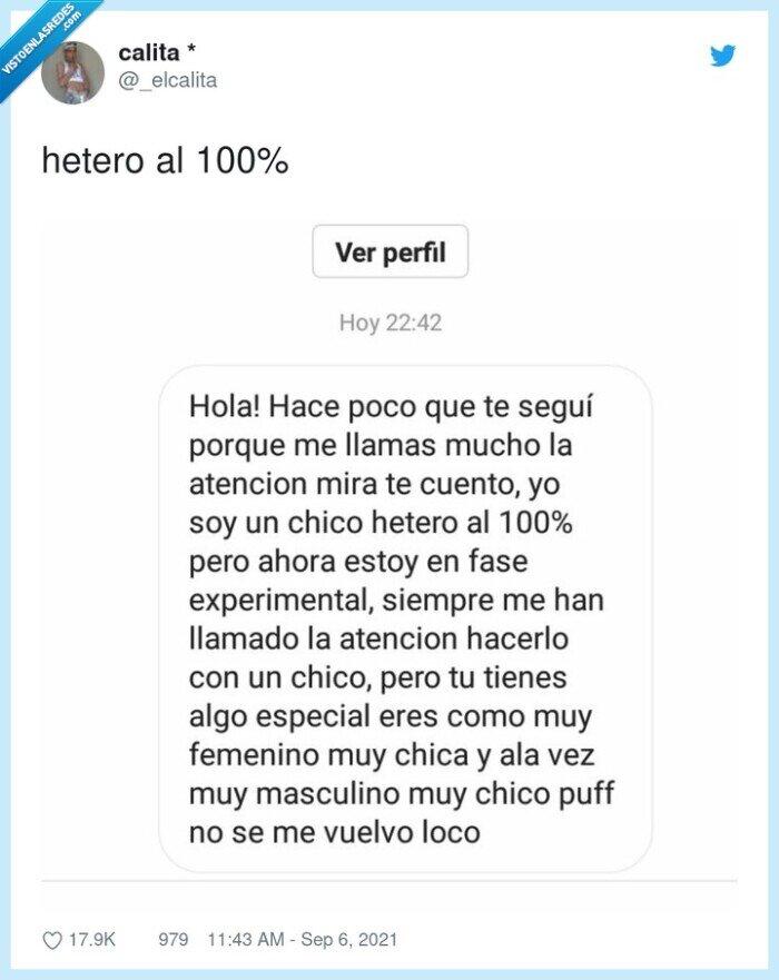 experimental,fase,hetero