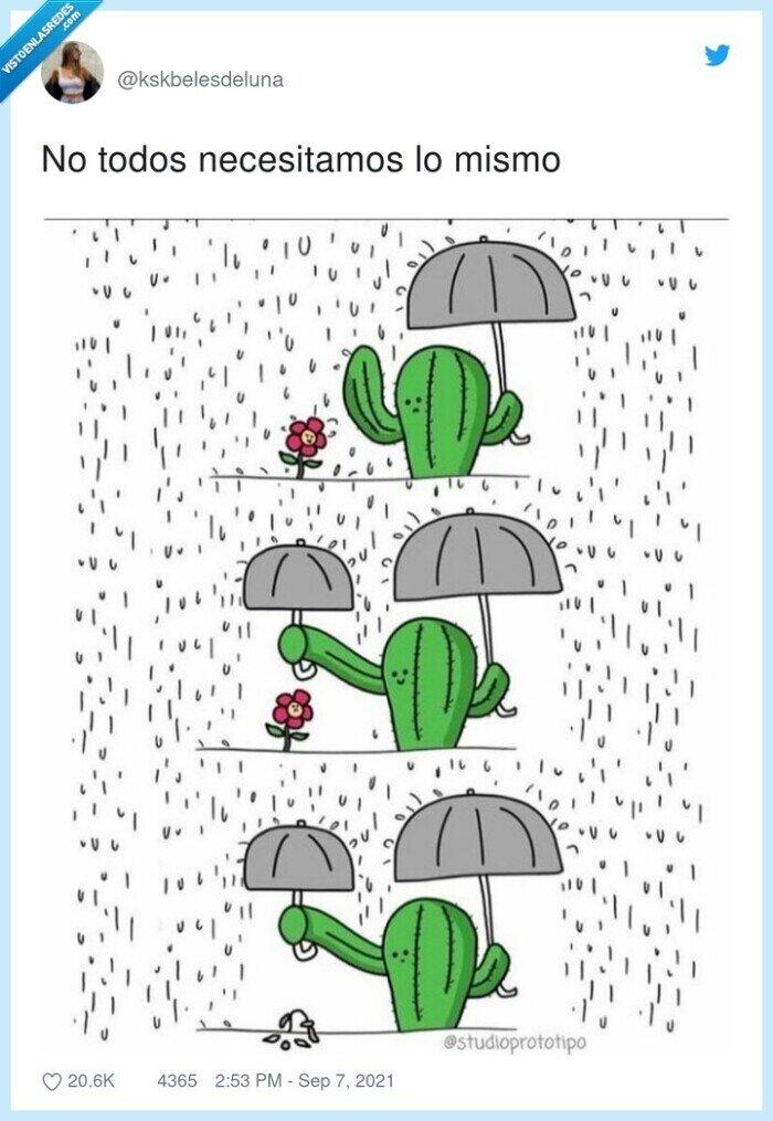 cactus,dibujo,flor,ilustración,necesidades