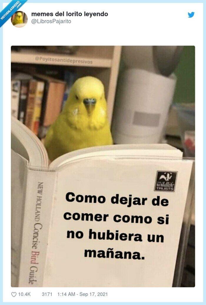 comer,dejar,libro