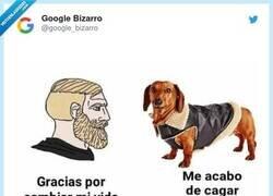 Enlace a Son muy agradecidos, por @google_bizarro