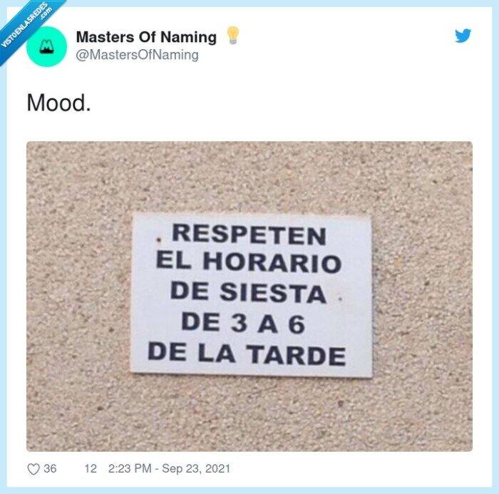 mood,siesta,tarde