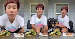 """Enlace a Intenta enseñar que su perro es vegetariano """"por elección"""" pero la demostración le sale mal"""