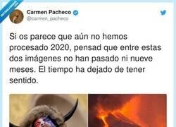 Enlace a Un 2021 de locos, por @carmen_pacheco
