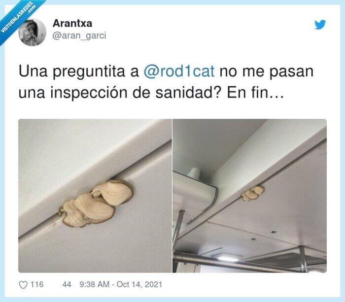 inspección,setas,techo,tren