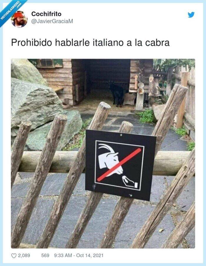 cabra,hablarle,italiano,prohibido