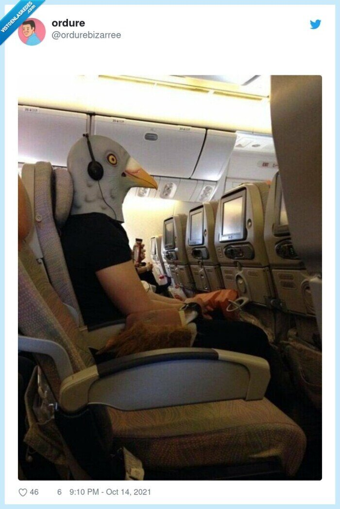 avión,máscara,paloma