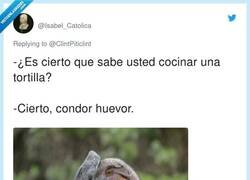 Enlace a Atención que habla el condor, por @Isabel_Catolica