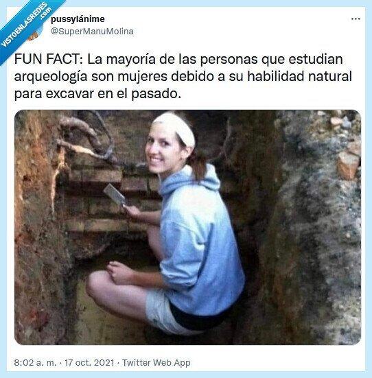 arqueología,excavar,habilidad,natural