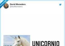 Enlace a Los unicornios sí existen, por @dvdMonedero